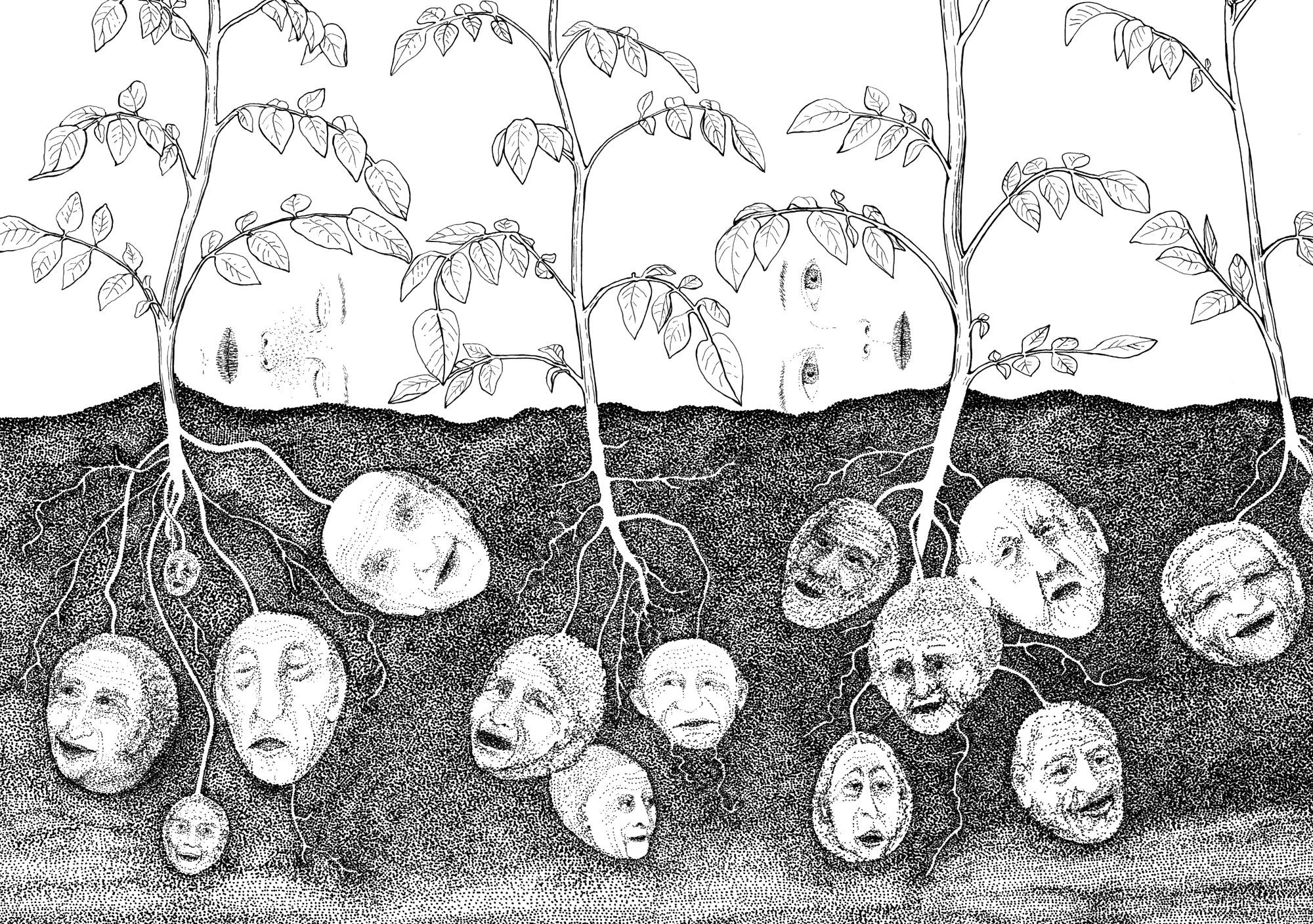 Alle-trær-gror-forskjellig_5